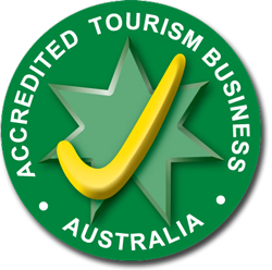 Tourism Industry Council of Tasmania logo