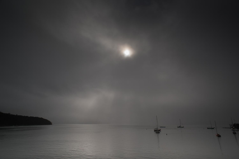 fog-7983