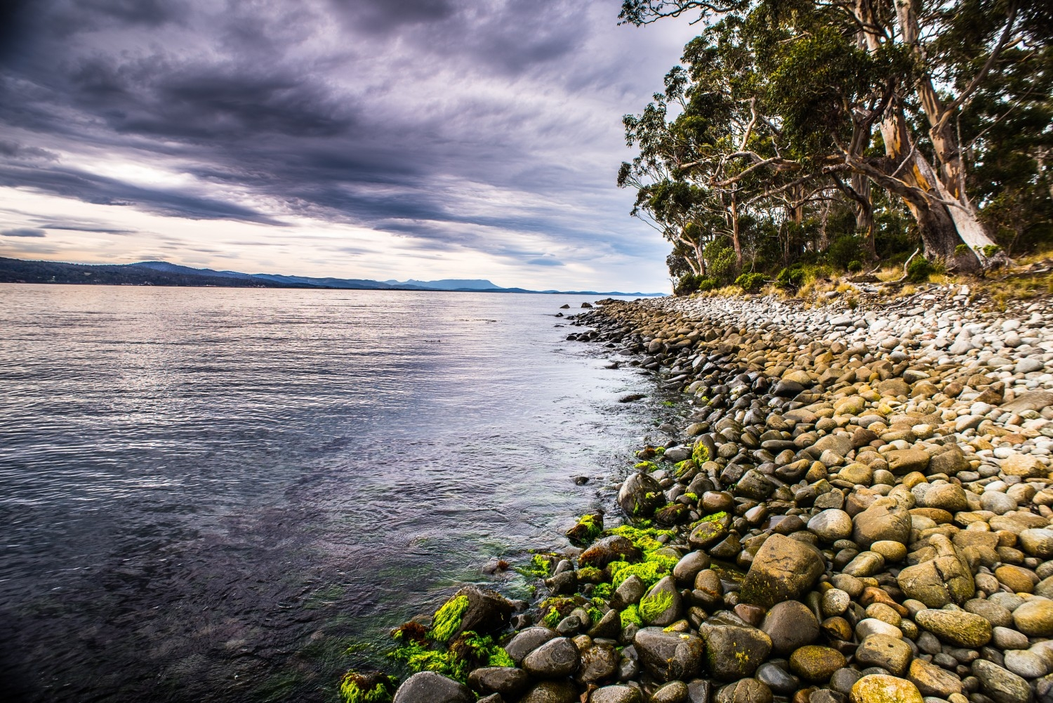 East Cove, Bruny Island, the site of former whaling haul-outs.